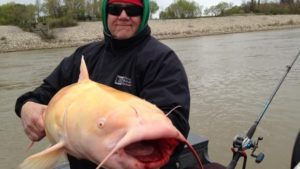 blackwater-cats-outfitter-albino-catfish